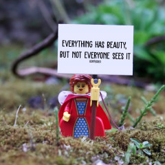 """Everything has beauty - Not everyone sees it """